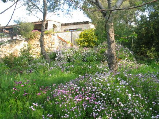 Le jardin de la villa Martinache en Avril