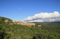 Le monastère est entouré d'un maquis profond; les chênes et les chataigners sont immenses
